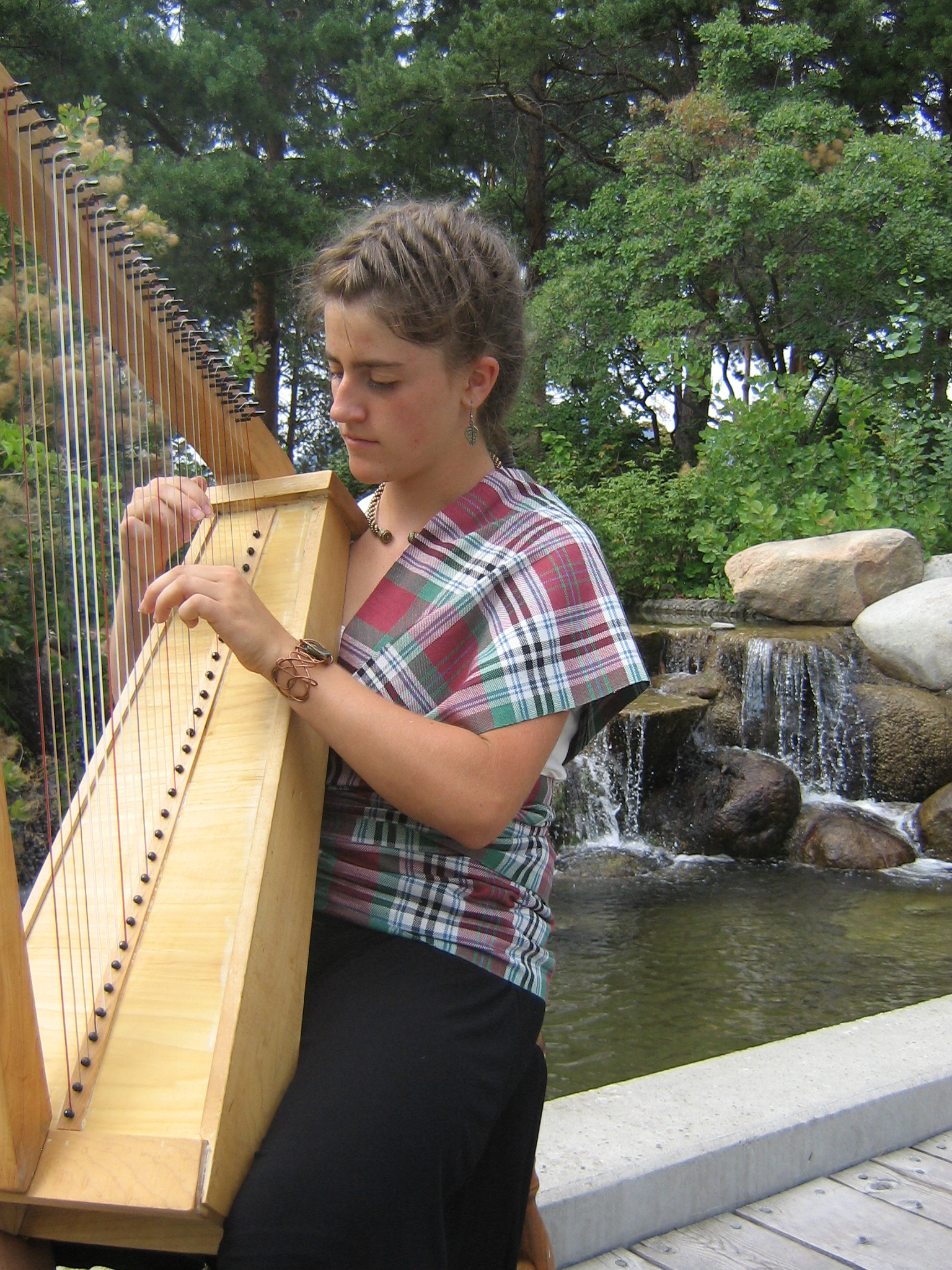 Ashley Dawson - Celtic Harpist